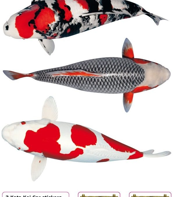 Nr: A Koi Stickers (3 pieces on A4)