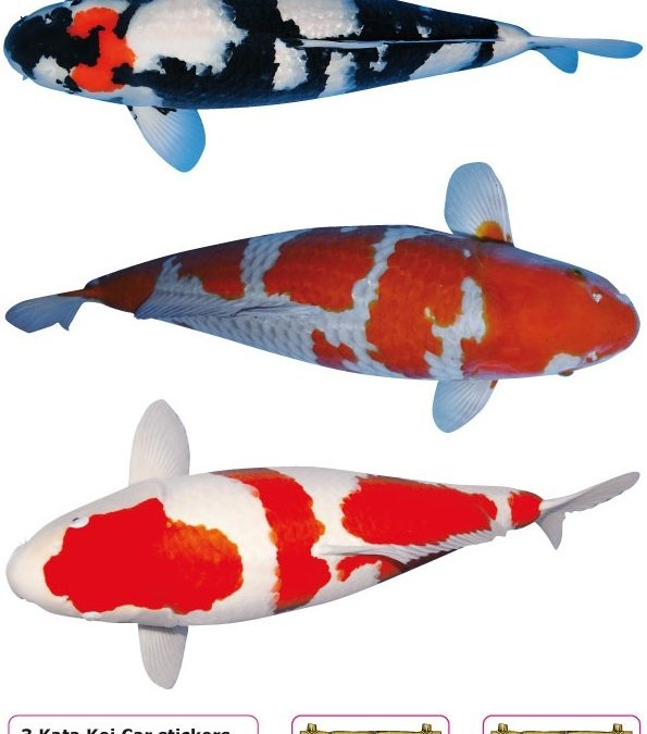Nr: D Koi Stickers (3 pieces on A4)