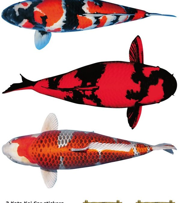 Nr: H Koi Stickers (3 pieces on A4)
